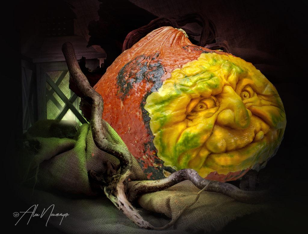 halloween kürbis1
