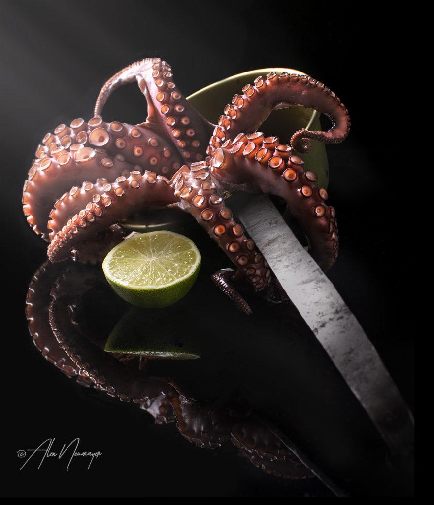 octopus DSC5468