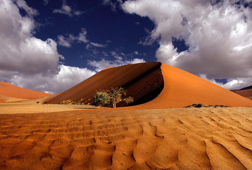 The Dune,